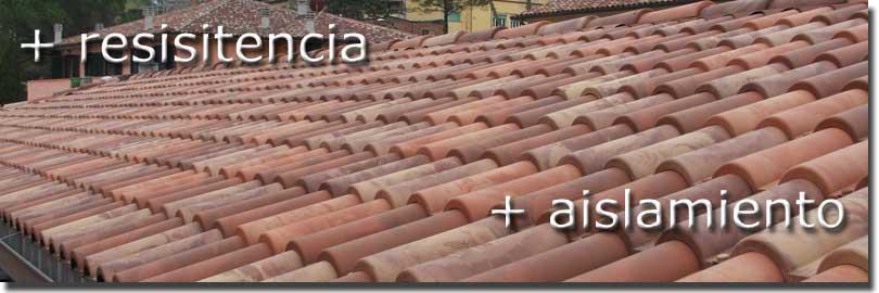 Tejas ligeras de pl stico para tejados y cubiertas con for Plastico para tejados